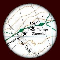 Two_Tumps_OS